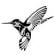 TribalHummingbird